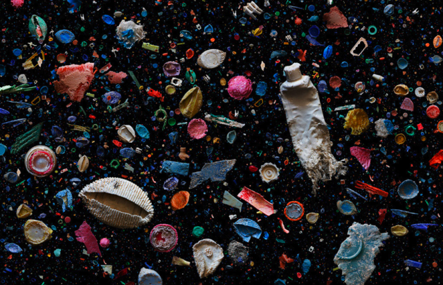 Environmental Crisis: The Oceans Will Contain More Plastic Than Fish by 2050