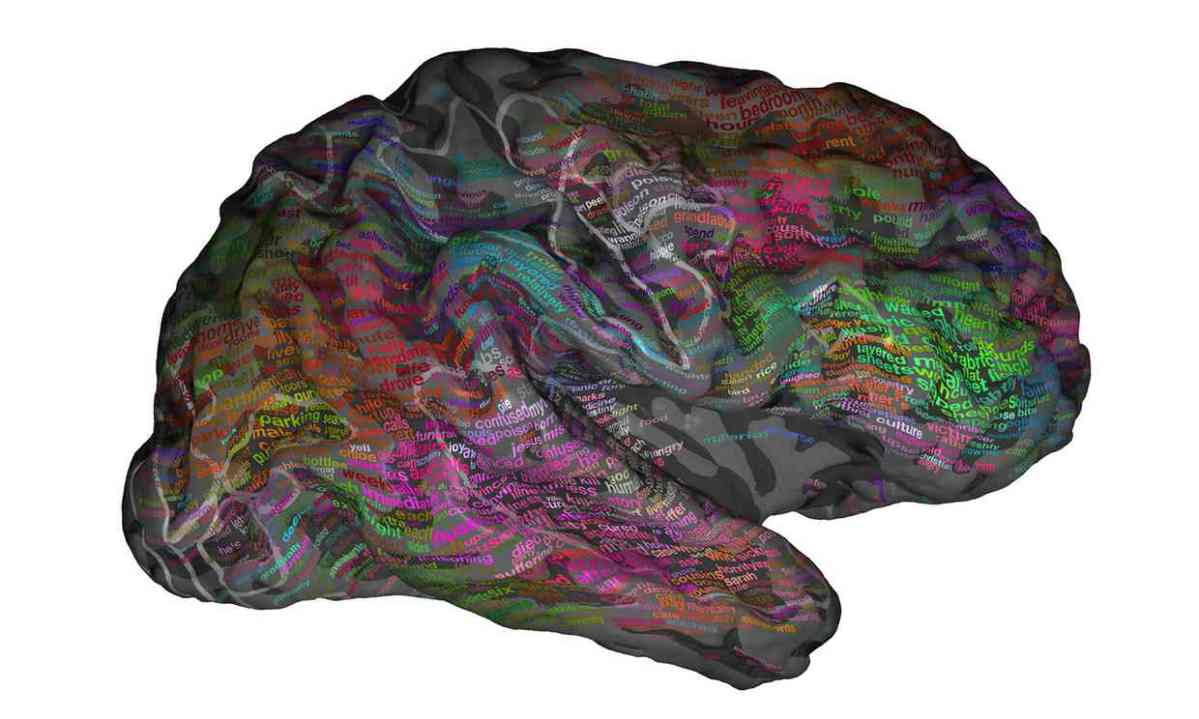 Neuroscientists create atlas showing how words are organised in thebrain.