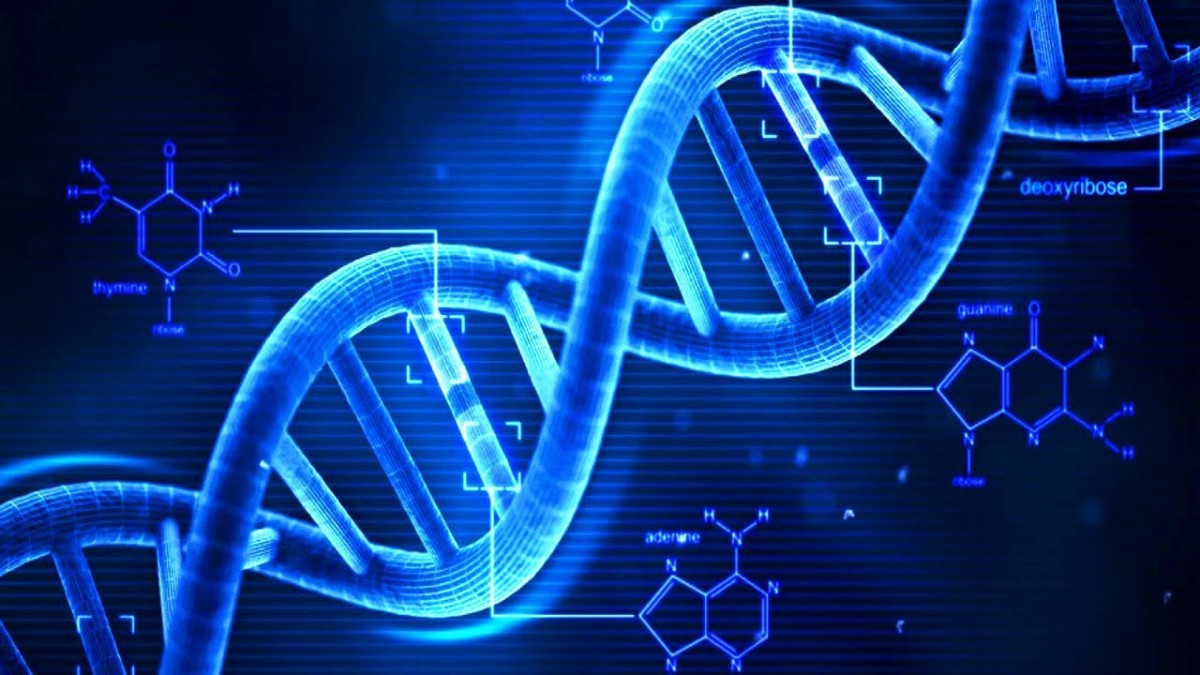 Scientists confirm there's a second layer of information hidden in ourDNA.