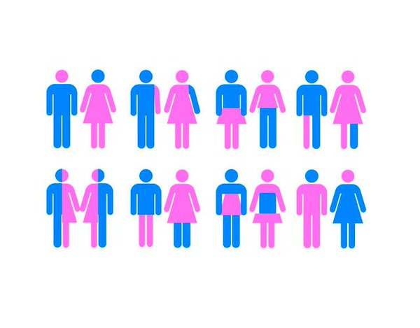If People Talked About Other Things the Way They Talked About GenderIdentity.