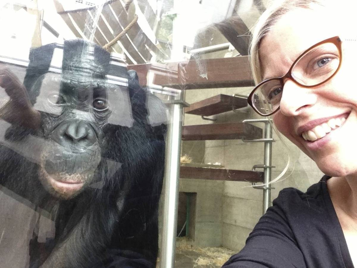 Bonobos Use the Power of Female Friendship to Overthrow MaleHierarchy.
