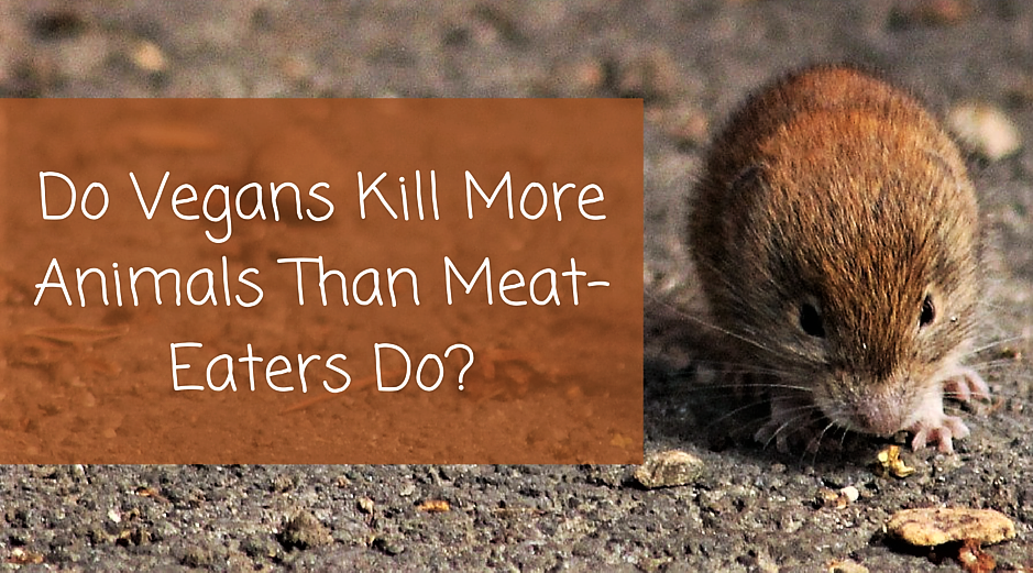 Vegans and vegetarians think they don't kill animals but they do.