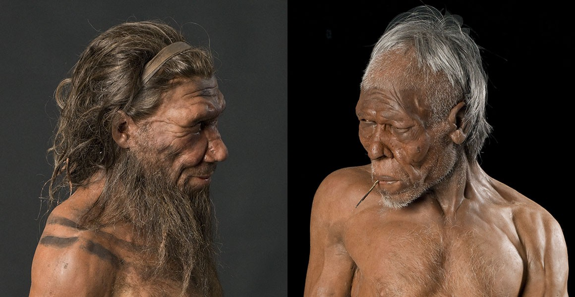 Nine Species of Human Once Walked Earth. Now There's JustOne.